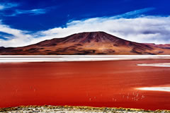When the wind blows, the red colour is more intense.