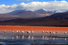 In winter, the mountains around the Red lagoon are coverd by snow.